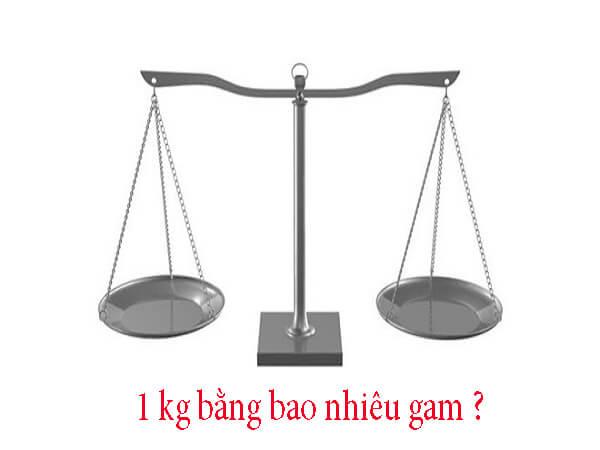 1 kg bằng bao nhiêu cân, tấn, tạ, yến, kilogam, gam, lạng