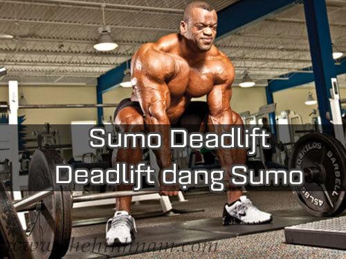 Deadlift là gì? Cách tập Deadlift để giảm mỡ hiệu quả?