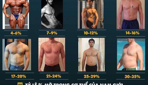 Body fat là gì ? Công cụ tính Body Fat như thế nào?