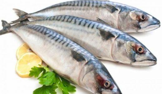 100g cá nục bao nhiêu calo? Ăn cá nục bị dị ứng?