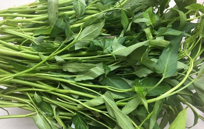 100g rau muống chứa bao nhiêu calo? 5 lý do tại sao nên ăn rau muống thường xuyên?